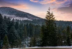 Forested mountain at winter sunset Royalty Free Stock Images