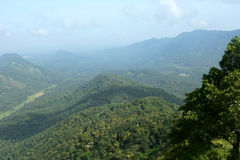 Forested mountains. Scenic view of green forested mountains royalty free stock photo