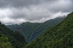 Forested mountains against cloudy sky. Ribeiro Frio, Madeira, Portugal. Forested mountains against cloudy sky. View from Balcoes viewpoint in Ribeiro Frio on royalty free stock photo