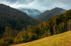 Forested mountains in autumn. Cloudy and foggy weather. creative moody toning stock photography