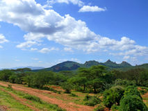 Forested mountains. Landscape nature. Africa, Ethiopia. Stock Photos