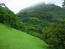 Forested mountainside. Scenic view of monsoon rainclouds over green forested mountainside Royalty Free Stock Photography