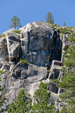 Forested mountainside scenic. Scenic view of forested mountainside near Lake Tahoe, California and Nevada, U.S.A stock photos