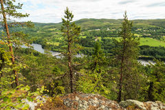 Forested mountins and a river Royalty Free Stock Photo