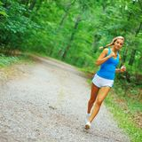 Forested Road Runner Stock Photo