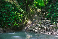 Forested rocks covered with ivy and moss with flowing waterfall Royalty Free Stock Images