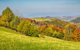 Forested rural hillsides in autumn Stock Images