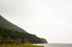 Forested slope at water against fog Royalty Free Stock Photos