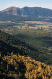 Forested slopes above Hanmer Springs Stock Photos