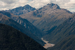 Forested slopes in Southern Alps Stock Photos