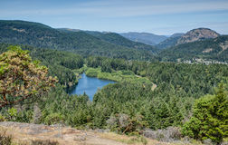 Forested valley near Victoria, BC, Canada Royalty Free Stock Photos