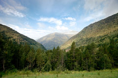 Forested valleys between the mountains. andorra Royalty Free Stock Photography