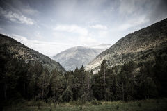Forested valleys between the mountains. andorra Royalty Free Stock Photos