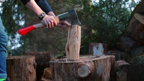 The forester chopped an ax with a log of wood while logging.