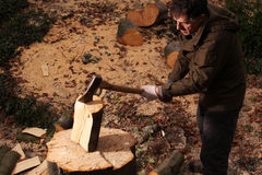 Forester chopping wood with an axe Stock Images