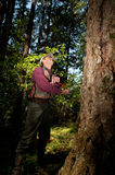 Forester in a Pacific Northwest. Forester using an auger to tell the age of a Douglas fir Royalty Free Stock Image