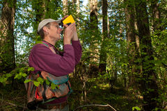 Forester in a Pacific Northwest. Forester using a laser tool to guage the height of a Douglas fir Stock Photo