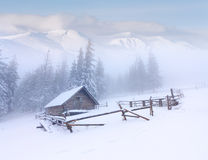 Forester's hut covered with snow Stock Photos