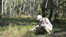 Forester studies a plant in the forest and writes data to the tablet