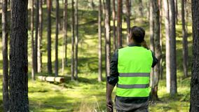 forester is watching the development of the forest