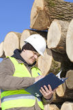 Forester writing. Near  at the log pile Royalty Free Stock Photo