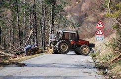 Foresters освобождая деревья поврежденные гололедью Стоковое Изображение