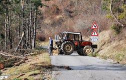 Foresters освобождая деревья поврежденные гололедью Стоковое Фото