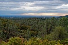 Forestland fuera del lago Shasta, California imagenes de archivo