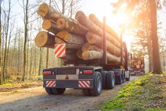 Free Forestry Activity: Transport Of Tree Trunks Stock Photography - 131525282
