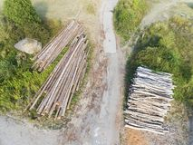 Forestry, Burnhaupt-le-Bas, Haut-Rhin royalty free stock photography