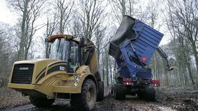 Forestry grinder unloading chip. On to transporter stock footage