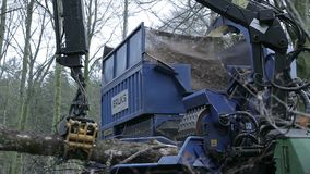 Forestry grinder at work. With chip being piled in background stock video