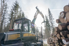 Forestry. Image of logger at work in winter woods. Forestry. Image of modern logger at work in winter woods stock photos