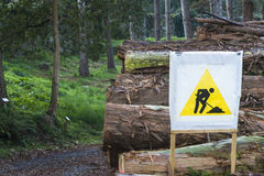 Forestry industry Royalty Free Stock Images