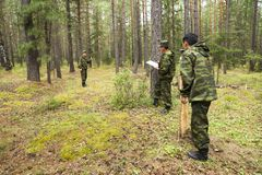 Forest inspectors work in the forest. Royalty Free Stock Photos