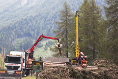 Forestry in the Koednitz valley, Austria Royalty Free Stock Photos