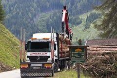 Forestry in Koednitz valley, Tyrol, Austria Stock Photo