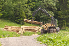 Forestry. Machine Harvester in a Forest stock photos