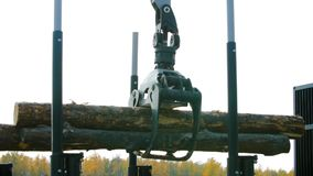 A forestry machine loads a log truck at the site landing. Forest machine down logs stock photos