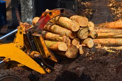 Forestry machinery Royalty Free Stock Images