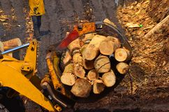 Forestry machinery Royalty Free Stock Photography