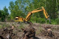 forestry Removendo os cotoes com uma máquina escavadora imagens de stock