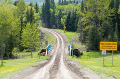 Forestry road Royalty Free Stock Images