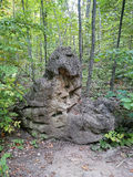 Forestry stone monster Royalty Free Stock Images