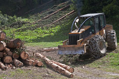 Forestry work. Heavy machines are indispensable in the current forestry stock image