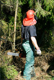 Forestry worker. A forestry worker exploring a situation stock photo