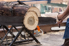 Forestry worker. Man sawing log with a two hands saw stock photography