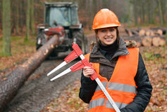 Forestry worker. Young and beautiful forestry engineer at work royalty free stock image
