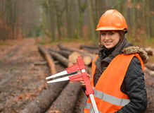 Forestry worker. Young and beautiful forestry engineer at work stock image