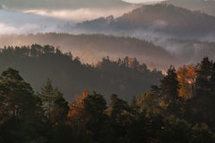 Forests. Of Bohemian Switzerland, National Park Stock Photos